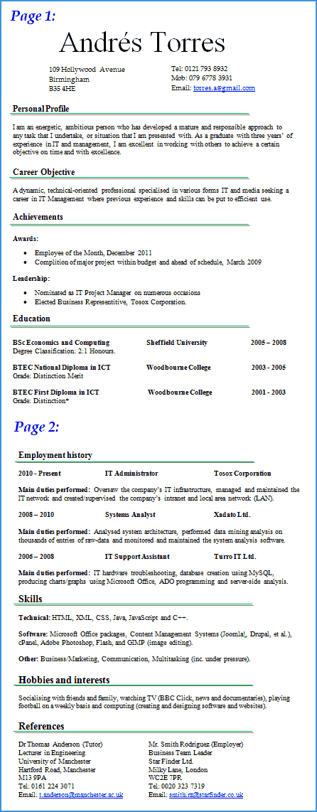 Preview of IT cv